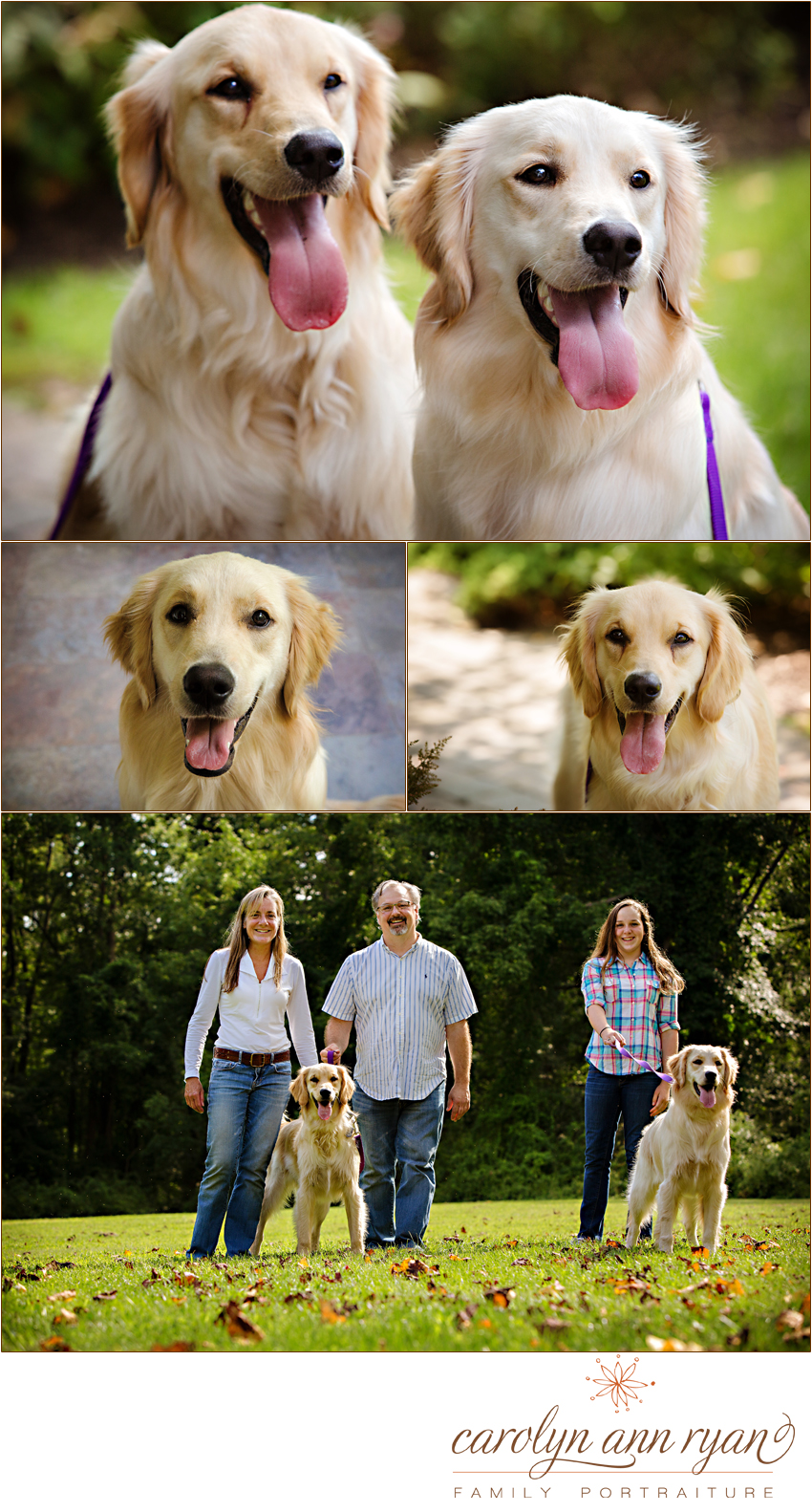 Charlotte, NC Pet Photographer, Carolyn Ann Ryan, photographers a portrait session